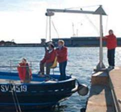sollevatore del porto in azione